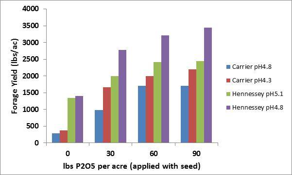 Figure 3.  The impact of banding phosphate with seed at planting in acidic soils on winter wheat forage production in Oklahoma.  Chart adapted from Boman et al. 1992.