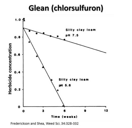 Figure 5. The concentration of Glean (Cholorsulfuron) remaining in too soils (pH 7.5 and pH 5.6) over a twelve week period.