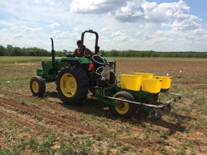 Image taken while planting the Soybean Starter study at Perkins.  A CO2 system was used to deliver starter fertilizers with seed.